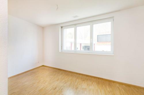 PGP_Kosslismühle Steinegg_EG_2.5 Zimmer_S_W-3 m