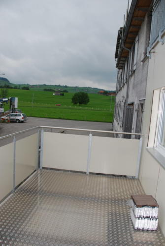 Neubau Kosslismühle_4 Zi-Whg_Nr. 3_14.08.2010 16-49-46_0045