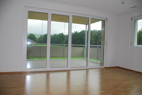 Neubau Kosslismühle_5.5 Zi-Whg_Nr. 5_14.08.2010 17-01-23_0060
