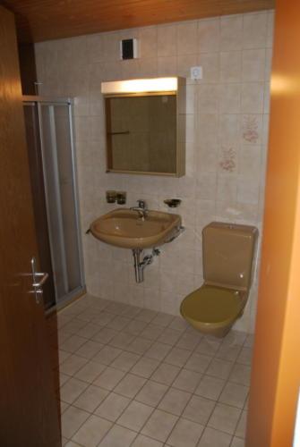 Ronis 5 3.5 Zi-Attikawhg W33 15.01.2011 15-50-51 0014